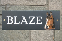BlazeHorse-L