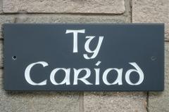 LargeTyCariad6Celtic